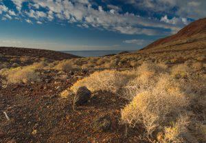 Východ slunce - Tenerife